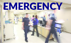 Emergency Department unit descriptions